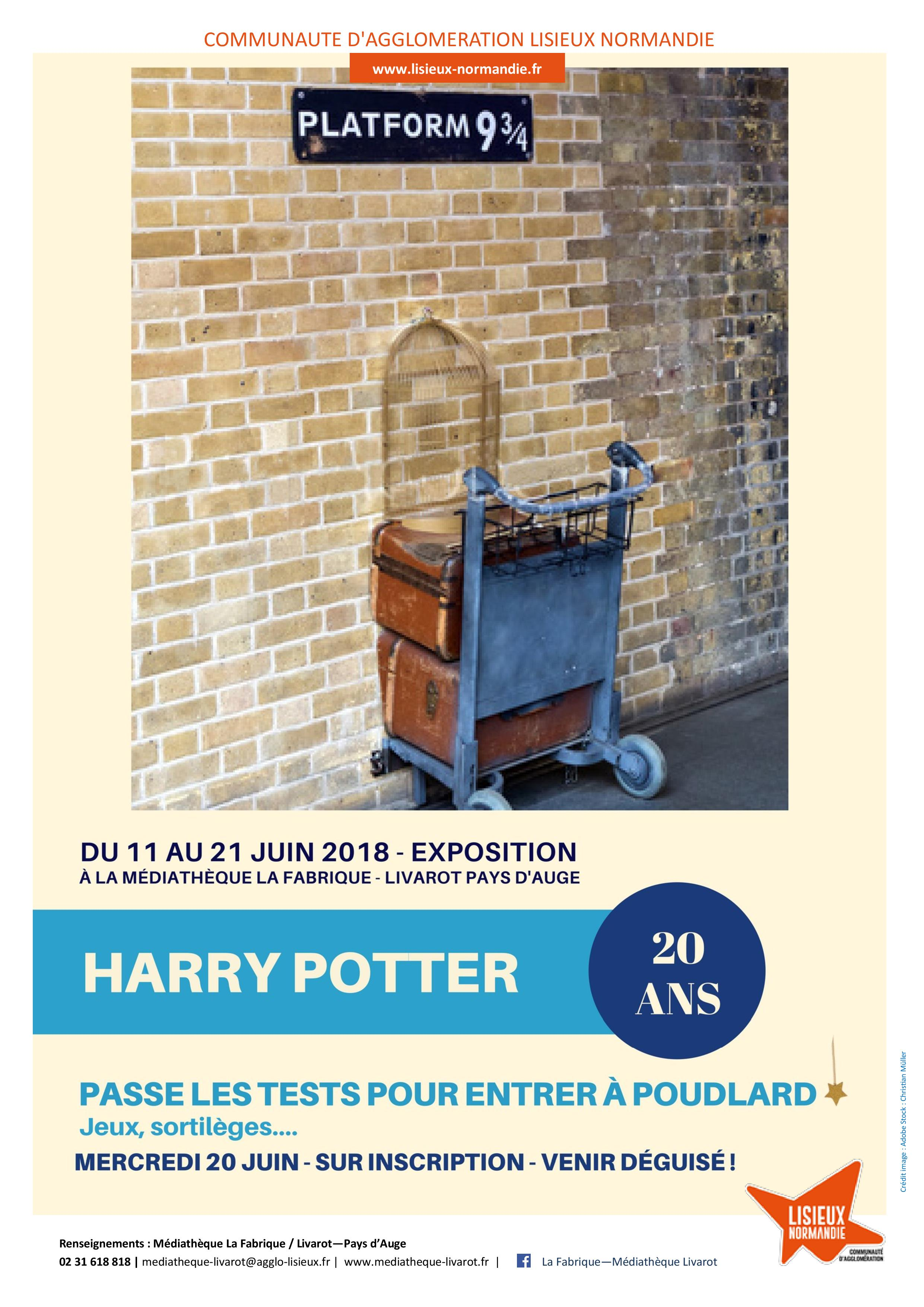 exposition harry potter affiche page 001